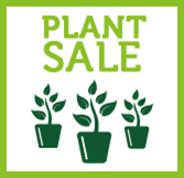 Plant Sale - Cake and Coffee!