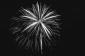 Light Party 2017 thumbnail